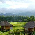 Einfach eine tolle Landschaft rund um Chiang Mai
