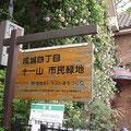 成城4丁目十一山緑地