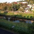 ふれあい広場から野川を望む