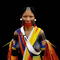 Arará IV. Macaw. Kayapo culture, Brazil. 2006