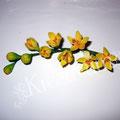 Gelber Blütenzweig