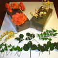 Blätter und Blüten aus Blütenpaste