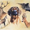 Jyrka-Du-Silltal - Acrylique sur toile - 80 x 60 cm - 2014 <br><br>Peinture . peintre animalier . artiste peintre . peinture animalière . animal . sanglier . chevreuil . chamois . chien de chasse . cerf