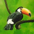 Toucan - Acrylique sur toile - 60 x 60 cm - 2017<br><br>Peinture . peintre animalier . artiste peintre . peinture animalière . animal . oiseau exotique