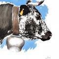 Sans titre - Encre couleur réhaussée de crayon noir sur papier - 40 x 50 cm - 2013<br><br>Peinture vache . dessin vache . vache vosgienne . toile . peinture animalière . peintre animalier . race vosgienne