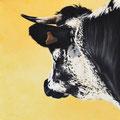 Eclipse - Acrylique sur toile - 50 x 50 cm - 2010<br><br>Peinture vache . dessin vache . vache vosgienne . toile . peinture animalière . peintre animalier . race vosgienne