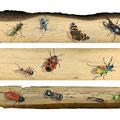 Vie et mort de l'Arbre - Acrylique sur bois - 2013<br><br>Peinture . peintre animalier . artiste peintre . peinture animalière . animal . insecte . trompe l'oeil animaux
