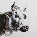 Vosgienne N°1704 - Encre couleur réhaussée de crayon noir sur papier gris- 60 x 60 cm - 2017<br><br>Peinture vache . vache vosgienne . toile . peinture animalière . peintre animalier . race vosgienne