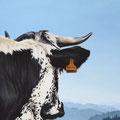 Hermine - Acrylique sur toile - 46 x 55 cm - 2010<br><br>Peinture vache . dessin vache . vache vosgienne . toile . peinture animalière . peintre animalier . race vosgienne