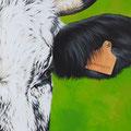 Émeraude - Acrylique sur toile - 40 x 100 cm - 2019<br><br>Peinture vache . vache vosgienne . toile . peinture animalière . peintre animalier . race vosgienne