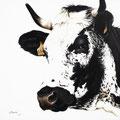 Lilas - Acrylique sur toile - 60 x 60 cm - 2013<br><br>Peinture vache . vache vosgienne . toile . peinture animalière . peintre animalier . race vosgienne