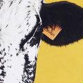 Carmen - Acrylique sur toile - 20 x 40 cm - 2012<br><br>Peinture vache . dessin vache . vache vosgienne . toile . peinture animalière . peintre animalier . race vosgienne