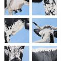 Signes extérieurs de Vosgienne II - Acrylique sur bois - 70 x 100 cm - 2003<br><br>Peinture vache . dessin vache . vache vosgienne . toile . peinture animalière . peintre animalier . race vosgienne