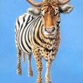 Vachement métissée - Acrylique sur papier - 20 x 30 cm - Visuel affiche Festival International de Sculpture Camille Claudel 2006<br><br>Peinture . peintre animalier . artiste peintre . peinture animalière . animal
