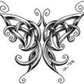 Dessin tatouage papillon celtique