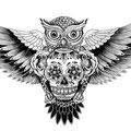 Dessin tatouage hibou tête de mort mexicaine