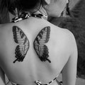 Tatouage ailes papillon dos