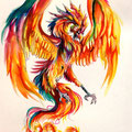 Dessin tatouage phoenix