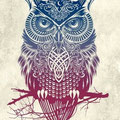 Dessin hibou tatouage