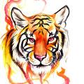 Dessin tatouage tête de tigre