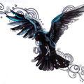 Dessin tatouage corbeau noir et bleu