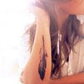 Tatouage plume bras