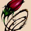 Dessin tatouage d'une fleur fermée