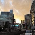 Shinjuku in pink