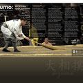 Sumo (Page 2)