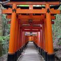 Cascading red torii gates at Fushimi-inari Jinja