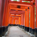 More red torii gates at Fushimi-inari Jinja
