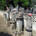 A few more Jizo just to be sure
