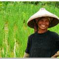 Indonesische vrouw in rijstveld