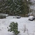 De volgende morgen: tot onze verrassing een pak sneeuw