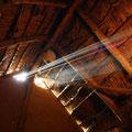 Die alltägliche Lichtshow - diesmal mit Hornissennest
