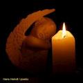 Kerze 16   (c) Hans Heindl / pixelio