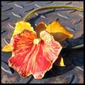 "Lette Leder ""Orchidee Cattleya"" gelb / rot, naßgeformt."