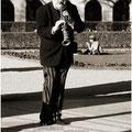 Musik im Hofgarten