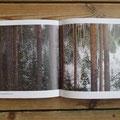 両ページが写真、という見開きもアリ