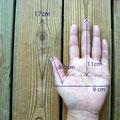 ご参考までに、私の手のサイズです