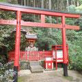 南天稲荷神社