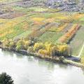 les belvédères de la vallée du Rhône entre Saint-Barthélemy de Vals et Tain l'Hermitage