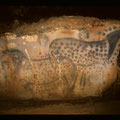 Panneau des chevaux ponctués (réalisé il y a 29.000 ans) - P. Cabrol © Centre de Préhistoire du Pech Merle (Cabrerets, Lot)