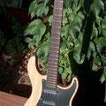 Schöne Gitarre mit Sumpfesche Korpus