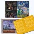Identidad para Ballet: Marca, diseño editorial y aplicaciones.