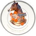コトワザ2 【A man may lead a horse to the water, but he cannot make it drink.】馬を水際に連れて行けても、むりに飲ませることはできない  (こちらの思い通りにやらせようとしても、おのずから限界があって、 いやがるものを強いることはできないというたとえ。)