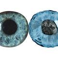 mimic2 eye