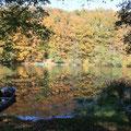 image du lac de la haute Sûre: 5 km de la grange de Max