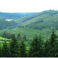 Landschaft luxemburgische Ardennen