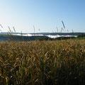 Landschaft  Boulaide: 15 km von der Grange de Max